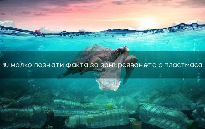 Факти за замърсяването с пластмаса